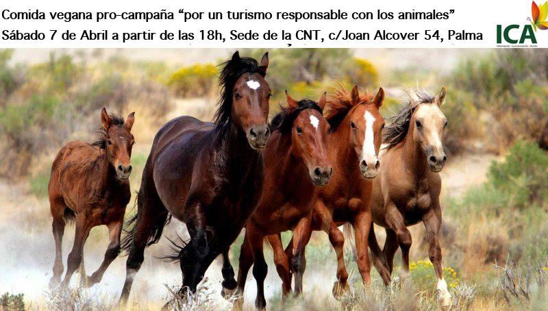 Menjar vegà solidari ICA-Animalista (07-04-18)
